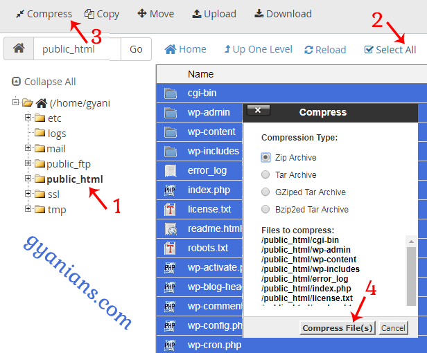compress and download all wordpress files